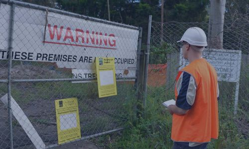 Council DA Arborist Reports